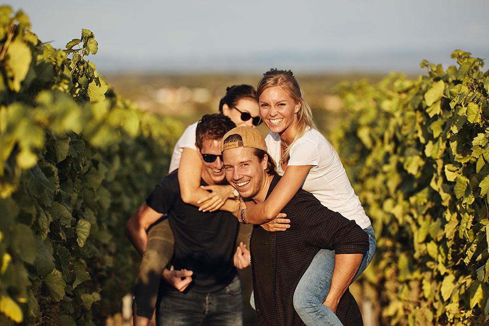 Weinwandern in Alsheim